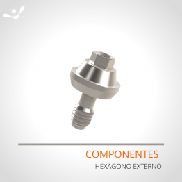 Componentes Hexágono Externo